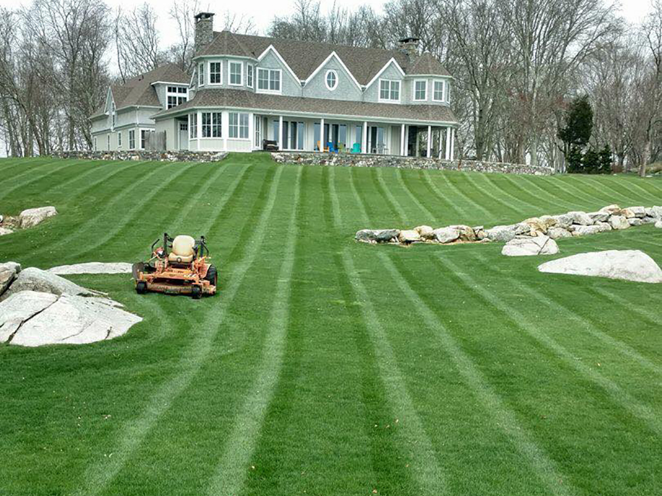 ct shoreline lawn care landscapers