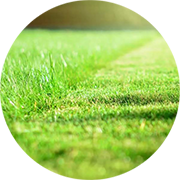 lawn care tips from TNT Landscaping & Excavation