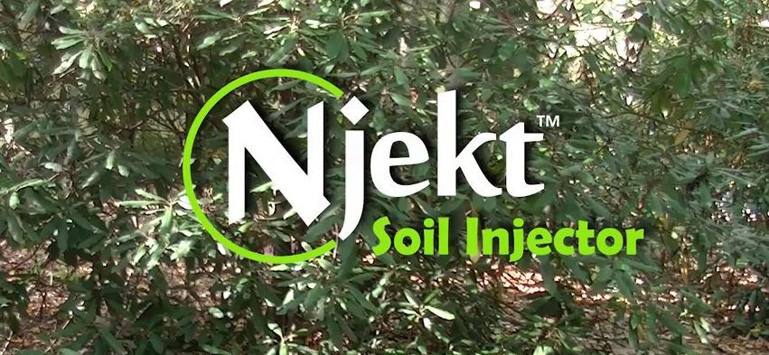 njekt tree fertilization service ct
